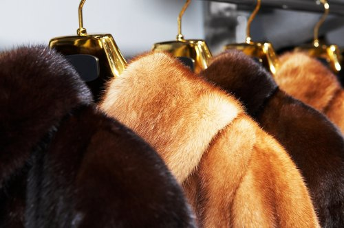 Hanging your fur in cold storage for best condition